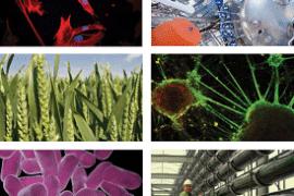 Automating Biologics IChemE Meeting