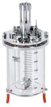 3L bioreactor cell culture